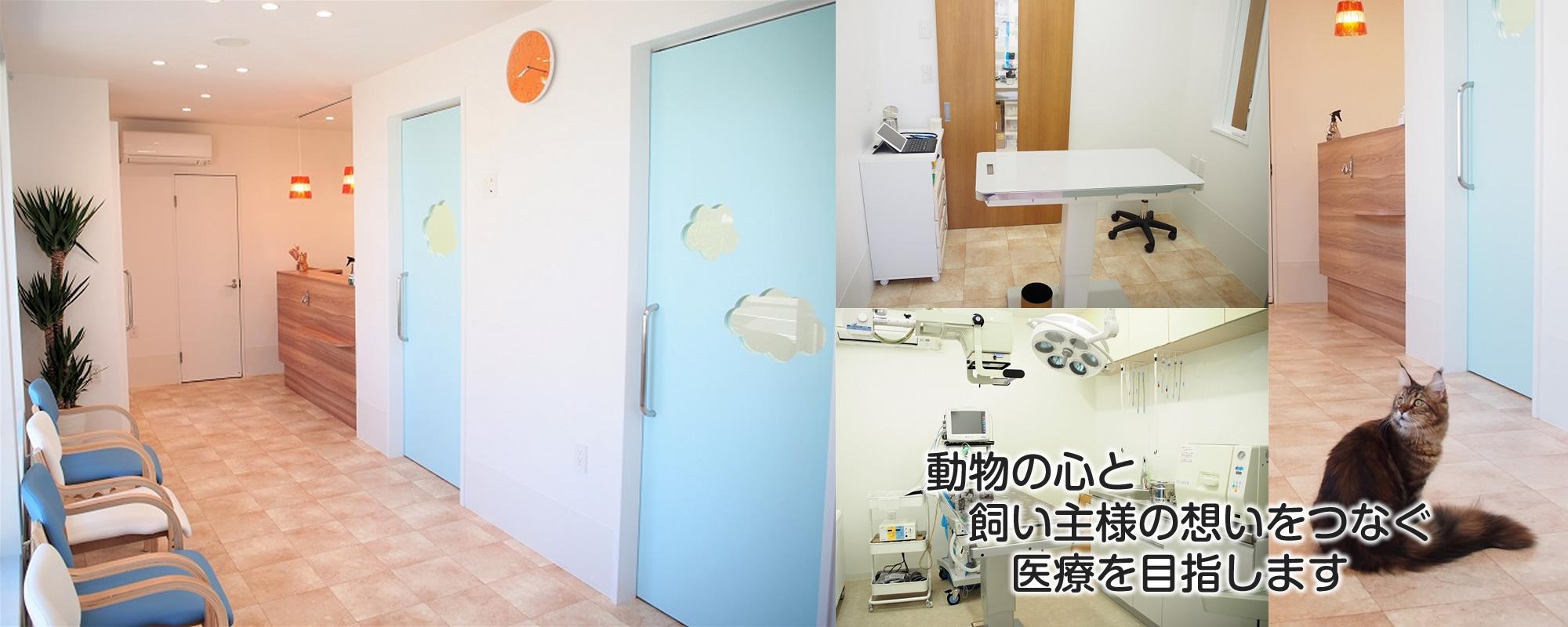受付・待合室・診察室・手術室